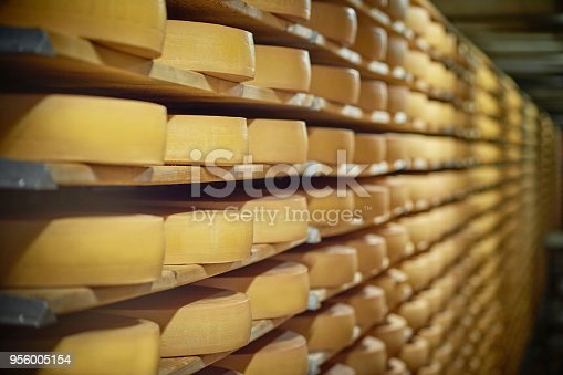 Close-up of the cheese wheel on the shelf.