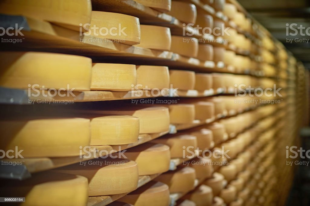 Cheese Wheel on Shelf stock photo