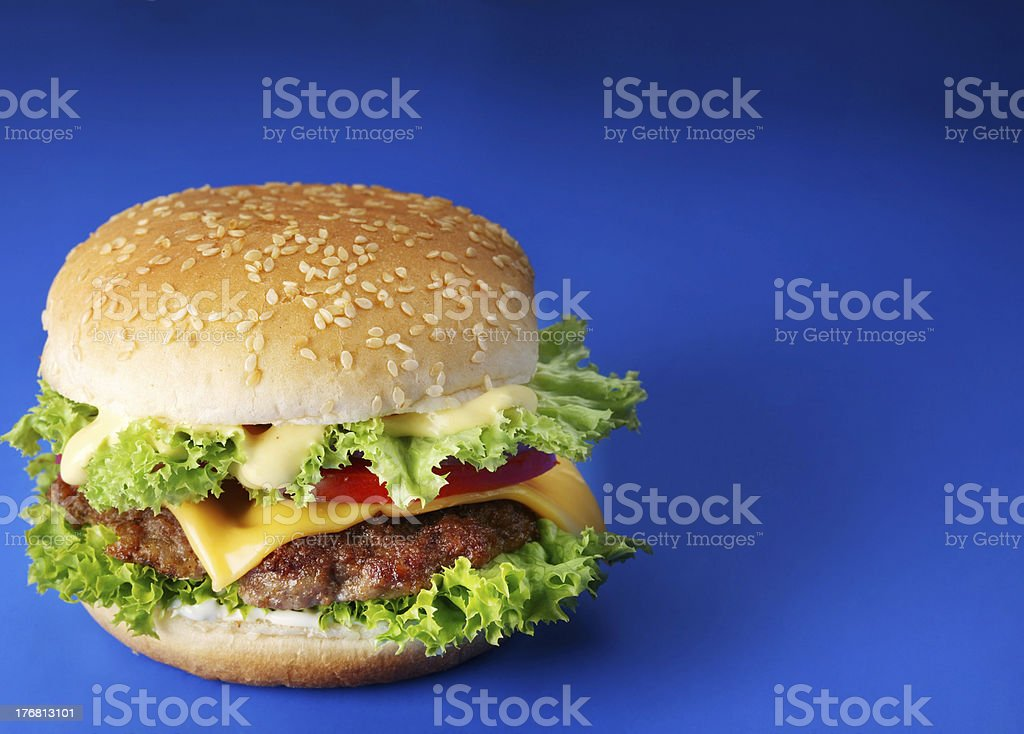 Cheeseburger on a blue background royalty-free stock photo
