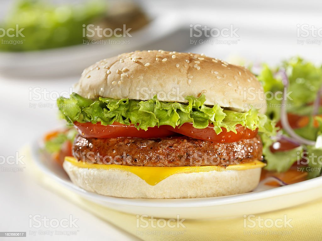 Cheeseburger with a side Salad royalty-free stock photo
