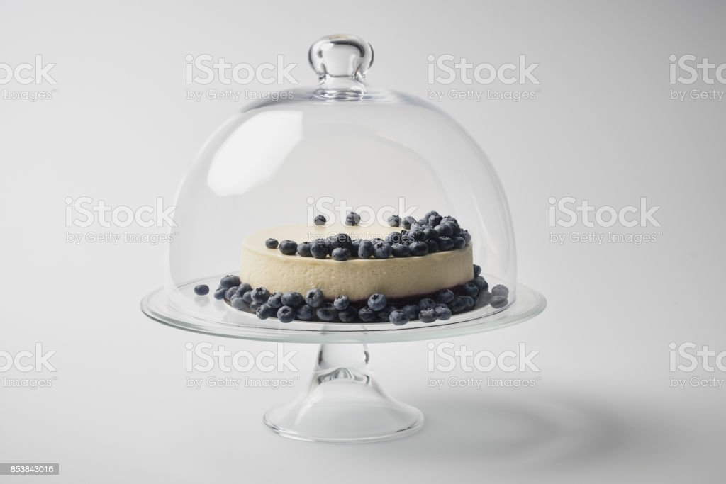 cheesecake with blueberries on glass stand stock photo