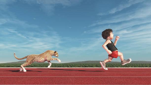 Cheetah chasing a man picture id618620090?b=1&k=6&m=618620090&s=612x612&w=0&h=lxnr5g0dzcdygvwnskafmn 4to9tgqkg8gb8y66vqty=
