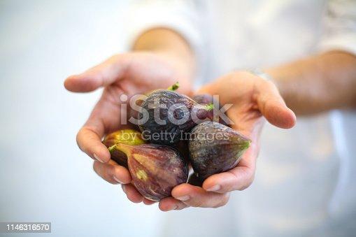Fresh figs in season