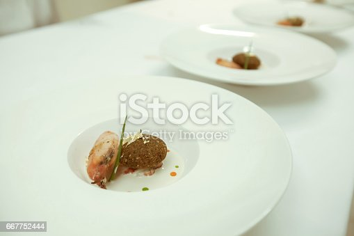 istock chef using chopsticks tong sliced beef put on the white plate in luxury dinner party, Blurry background with vintage color style. 667752444