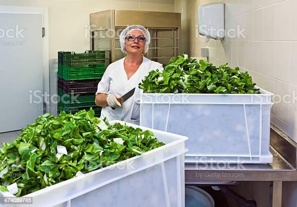 Chef with cut leafy vegetable in hospital kitchen picture id474089745?b=1&k=6&m=474089745&s=612x612&h=xfecohvaojcjjavdkzhx0ahhroblaeekx1iidq8kkz4=