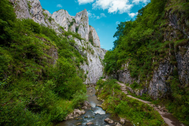 Cheile turzii canyon stock photo