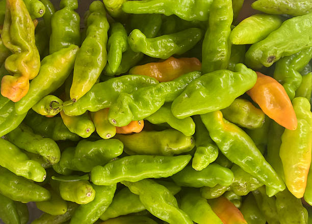 Cheiro Pepper stock photo