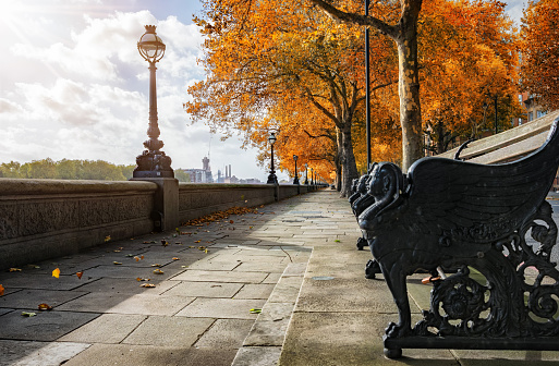 Chelsea Embankment during autumn time
