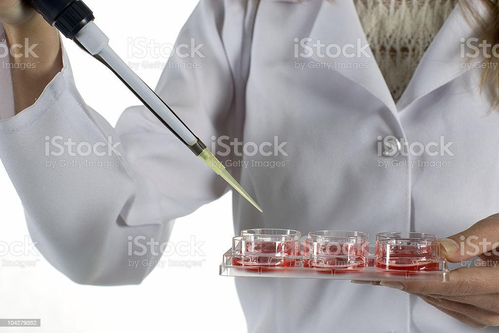 chemical experiment in laboratory royalty-free stock photo