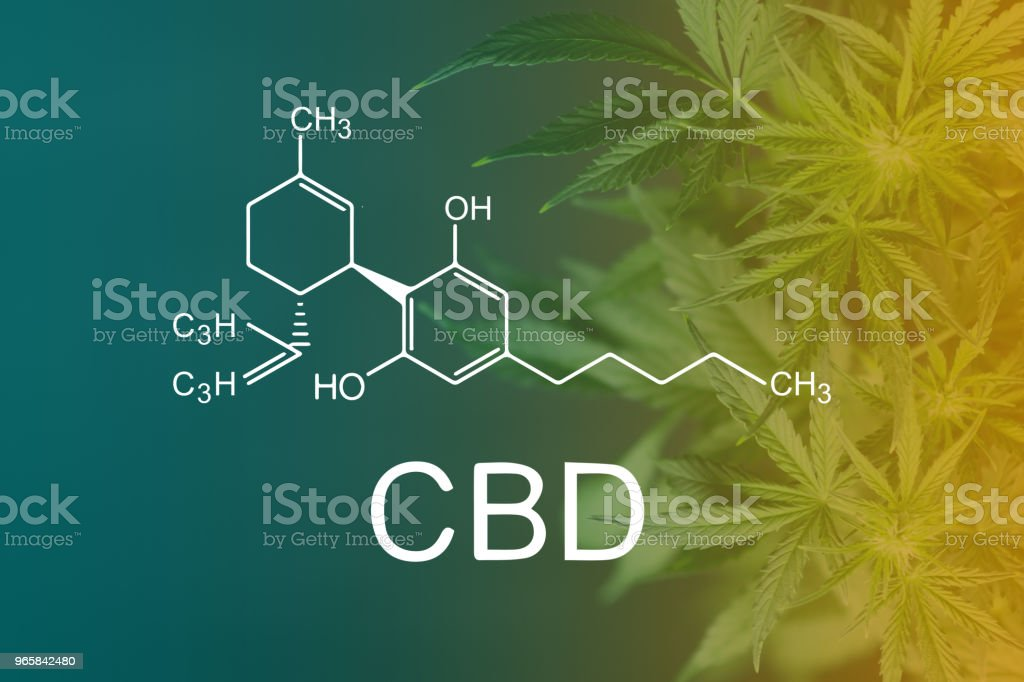 CBD Chemical Formula, Beautiful background of green cannabis flowers A place for copy space - Royalty-free Agriculture Stock Photo