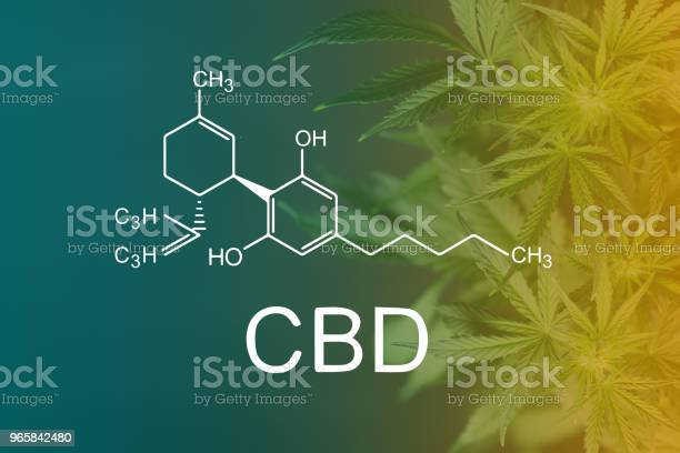 Cbd Chemical Formula Beautiful Background Of Green Cannabis Flowers A Place For Copy Space Stock Photo - Download Image Now