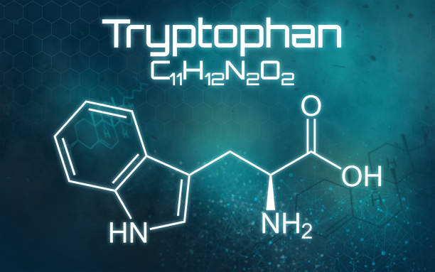 Chemical formula of Tryptophan on a futuristic background Chemical formula of Tryptophan on a futuristic background amino acid stock pictures, royalty-free photos & images