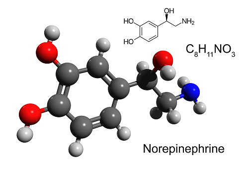 Chemical Formula Structural Formula And 3d Ballandstick Model Of Norepinephrine Stock Photo - Download Image Now
