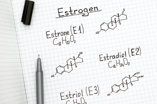 Chemical formulas of naturally occurring Estrogens - estrone (E1), estradiol (E2), estriol (E3) with black pen. Chemical formulas of naturally occurring Estrogens - estrone (E1), estradiol (E2), estriol (E3) with black pen. Close-up. oestrogen stock pictures, royalty-free photos & images