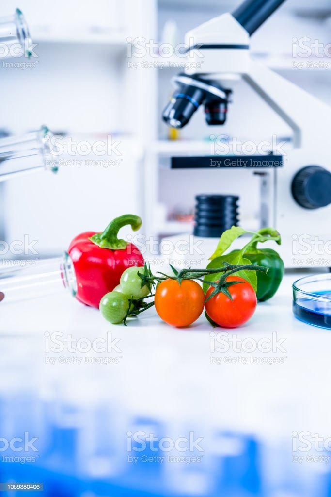 Chemical Laboratory of the Food supply . Food in laboratory, dna...