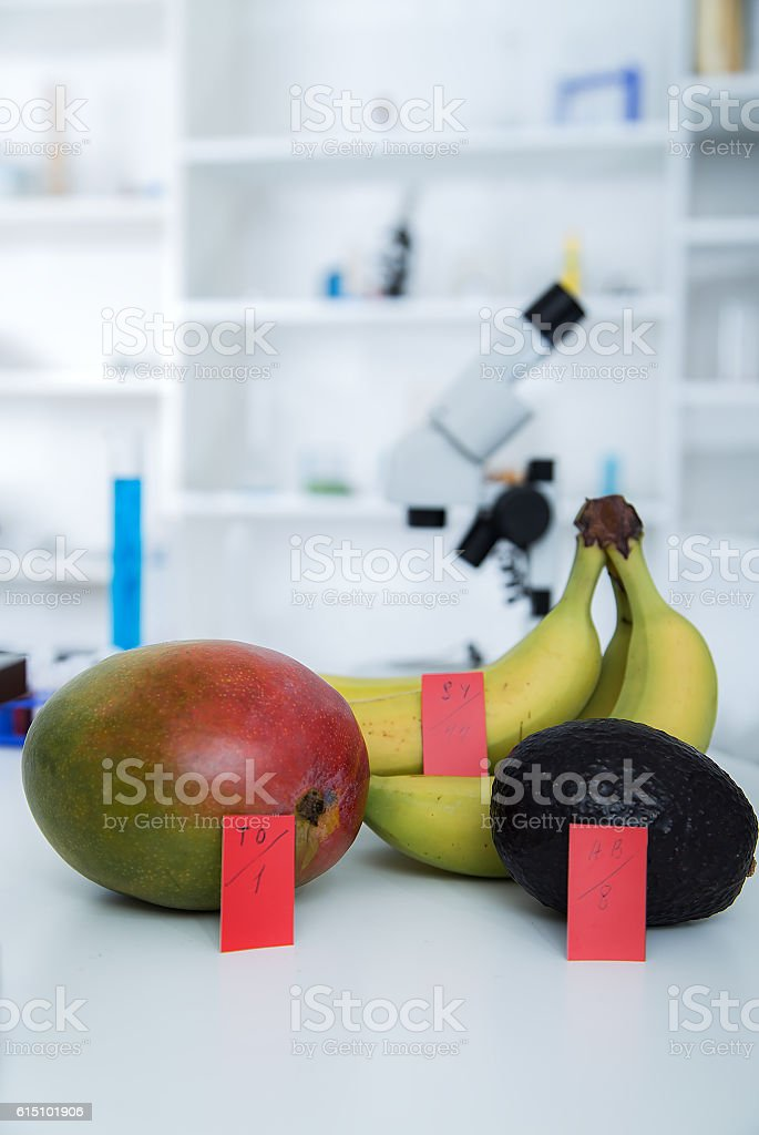 Chemical Laboratory of the Food supply .  in , dna modify . stock photo