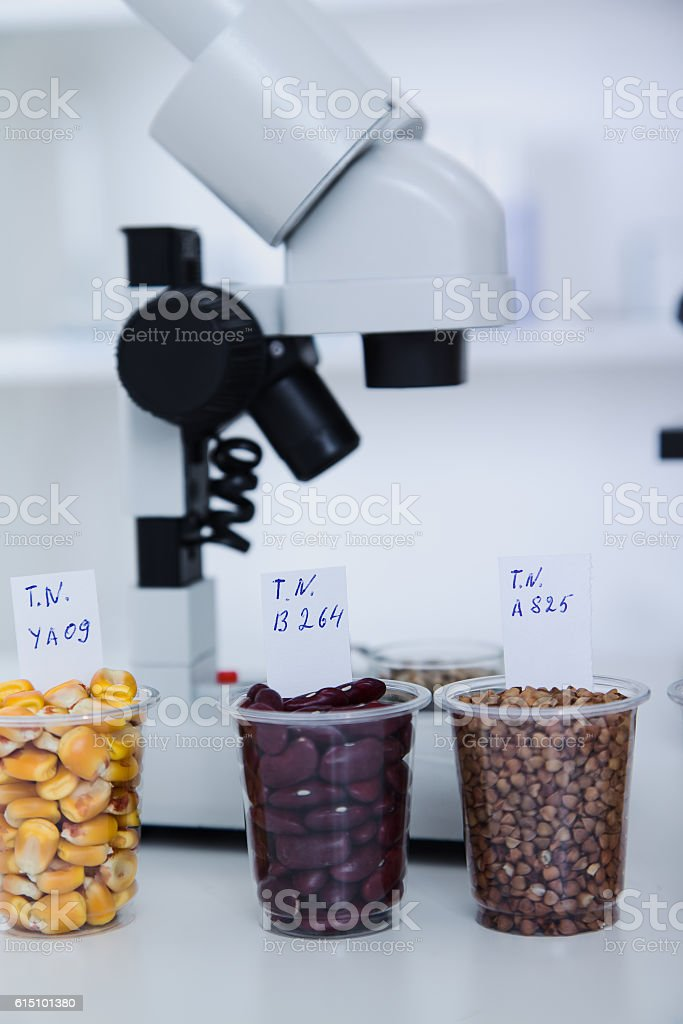 Chemical Laboratory of the Food supply .  in , dna modify . Toning stock photo