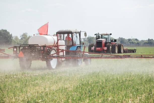chemische Behandlung von Anlagen zum Schutz vor Schädlingen mit einem Traktor auf dem Feld während des Tages – Foto