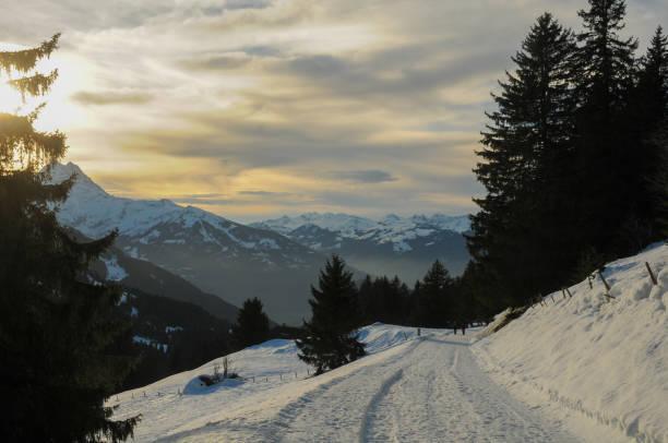Weg im Winter – Foto