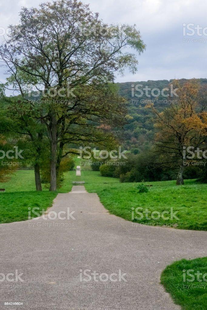 chemin, parc urbain - Photo