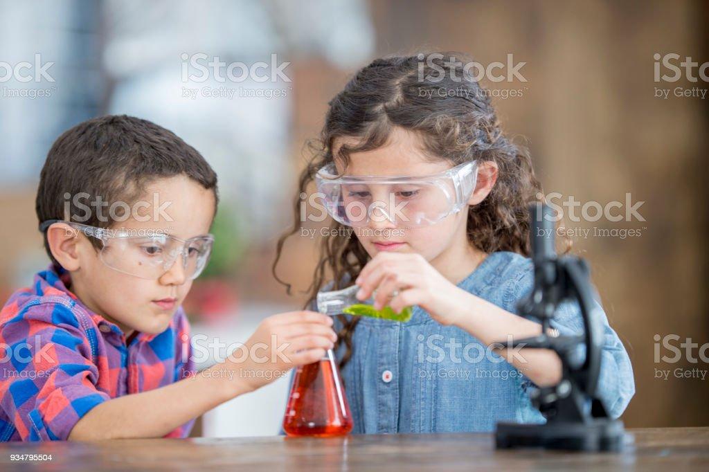 화학 프로젝트 - 로열티 프리 2명 스톡 사진