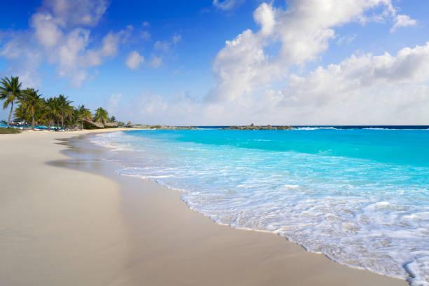 chen rio beach cozumel island in mexico - mexico stock pictures, royalty-free photos & images