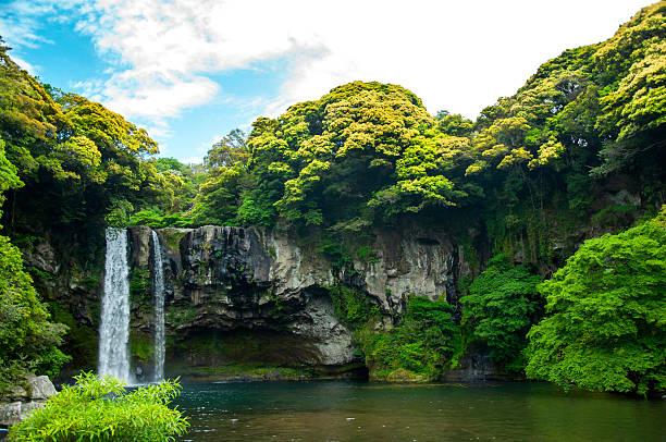 cheonjiyeon waterfall is a waterfall on jeju island, south korea - jeju island stock photos and pictures