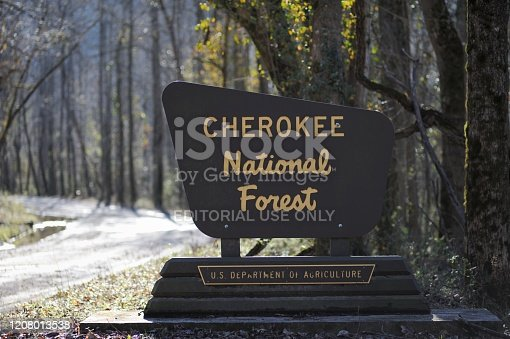Austral, Tennessee - January 19, 2020: Sign at the entrance to the Cherokee National Forest located along Spring Creek Road near Austral, Tennessee.