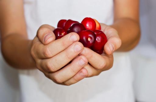 Cherries In Hands Stock Photo - Download Image Now