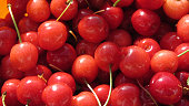 Fresh raw red cherries on a pile.