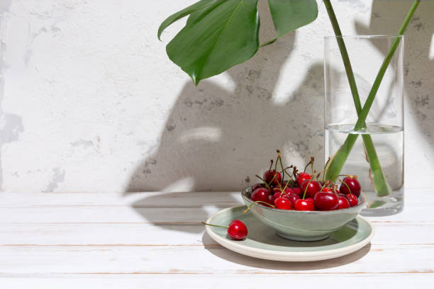 Cherries snack with monstera leaves at the sun stock photo