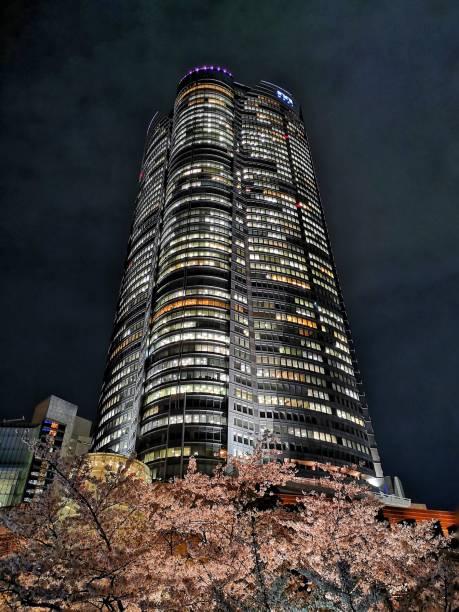 cherry blossom in Roppongi Hills Mori Tower at night. Toyko stock photo
