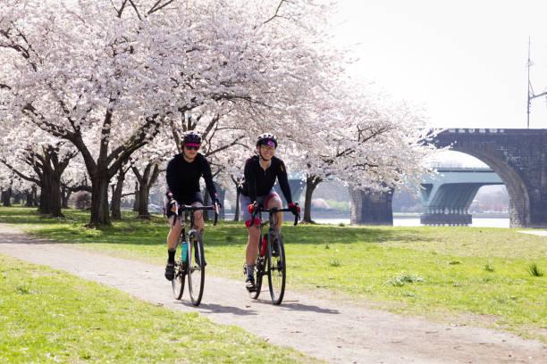 kirschblüten-gipfel in philadelphia - cyclocross stock-fotos und bilder