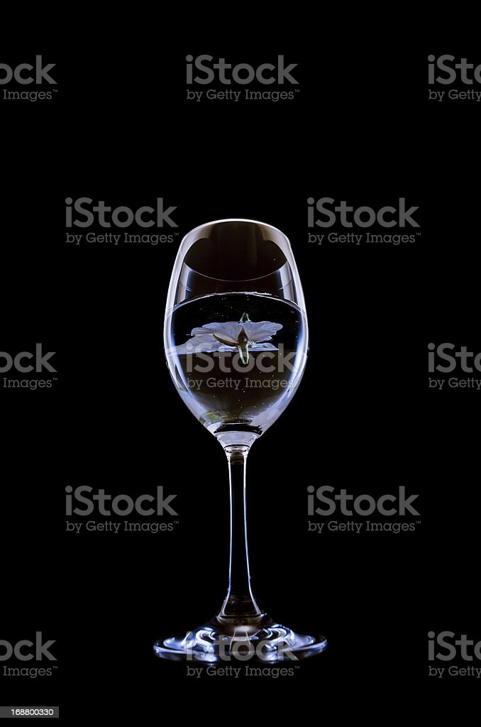 cherry blossom and wineglass royalty-free stock photo