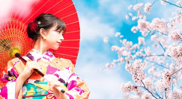 cherry blossoms and asian woman wearing kimono. - cherry blossoms imagens e fotografias de stock