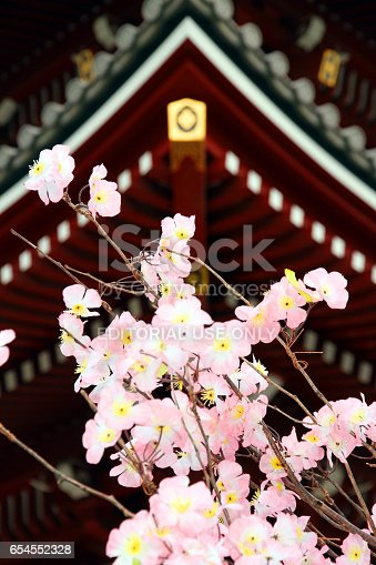 464620985 istock photo Cherry Blossoms and the Temple 654552328