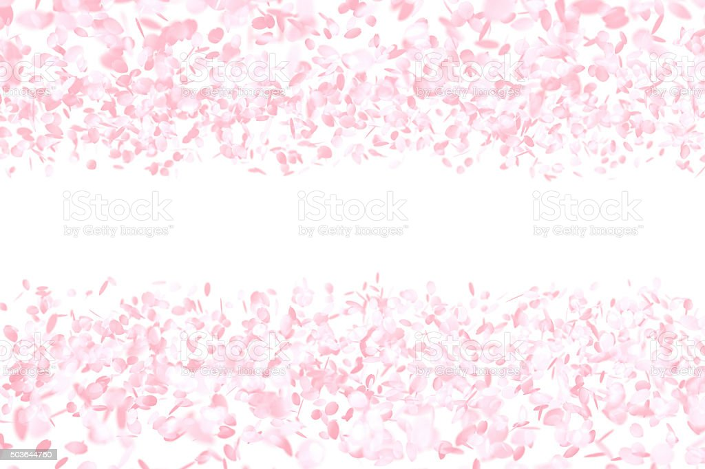 Cherry Blossoms, Pink Flower Background stock photo