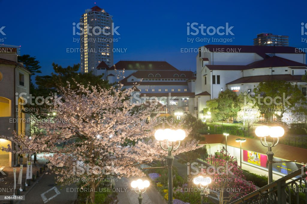 Cherry blossoms season in takarazuka hyogo prefecture japan stock cherry blossoms season in takarazuka hyogo prefecture japan royalty free stock photo publicscrutiny Images