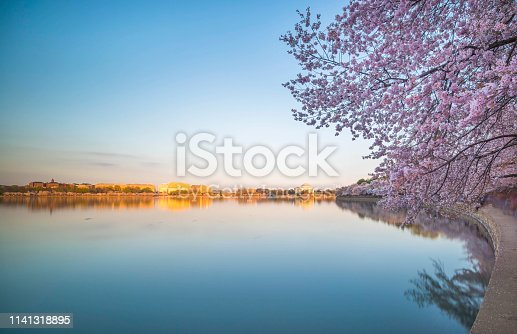 Washington DC, Jefferson Memorial, Tidal Basin, USA, Cherry Blossom