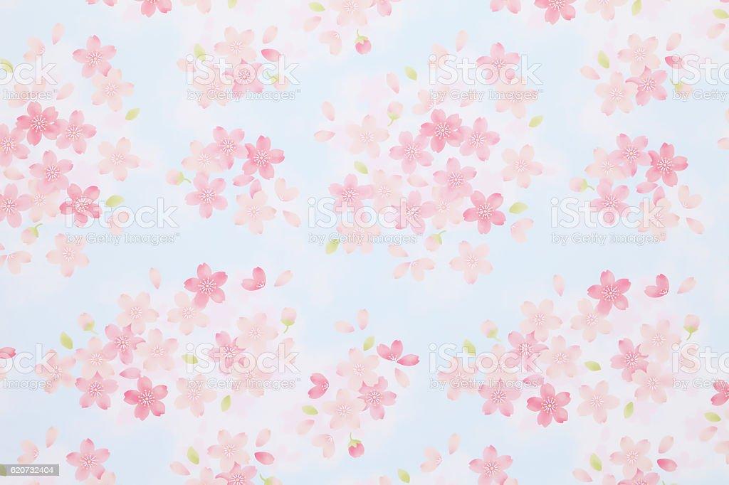 cherry flower pattern origami paper アジア大陸のストックフォトや