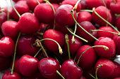 An abundance of cherries.