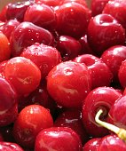 Close up shot of fresh raw organic red cherries on a pile.