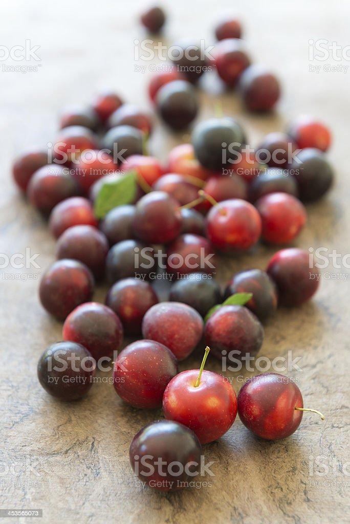 Cherry Plums - Fresh, Ripe and Organic royalty-free stock photo