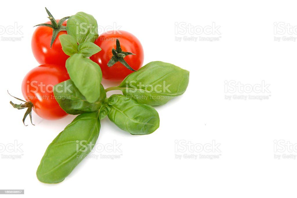 3 cherry tomatoes and basil together on white background stock photo