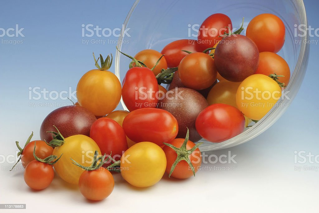 Cherry Tomatoes Cornucopia royalty-free stock photo