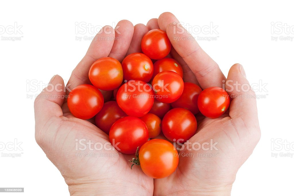Cherry tomatoes in hand royalty-free stock photo