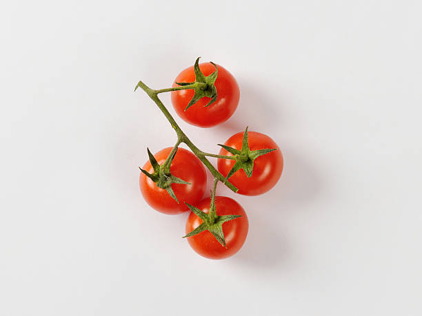 cherry tomatoes on vine - körsbärstomat bildbanksfoton och bilder