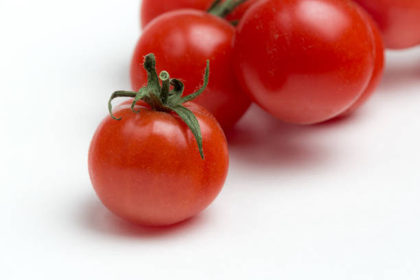 Tomates cerises sur fond blanc - Photo