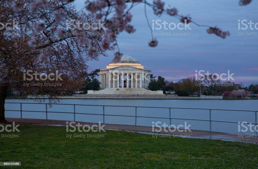 Flores De Cerezo Enmarcan El Monumento A Jefferson En Washington Dc ...
