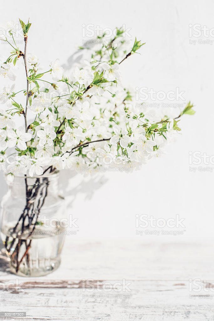Cherry Tree Branches With Blossoms In Vase Of Vintage Table Stock